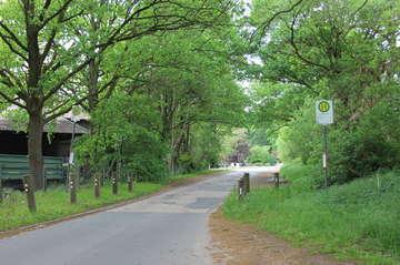 Am Moor wird saniert  Bürger entscheiden über Fußweg und Sicherheit  Von Björn Blaak