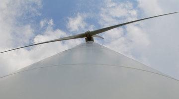 Feder gegen Windmühlen