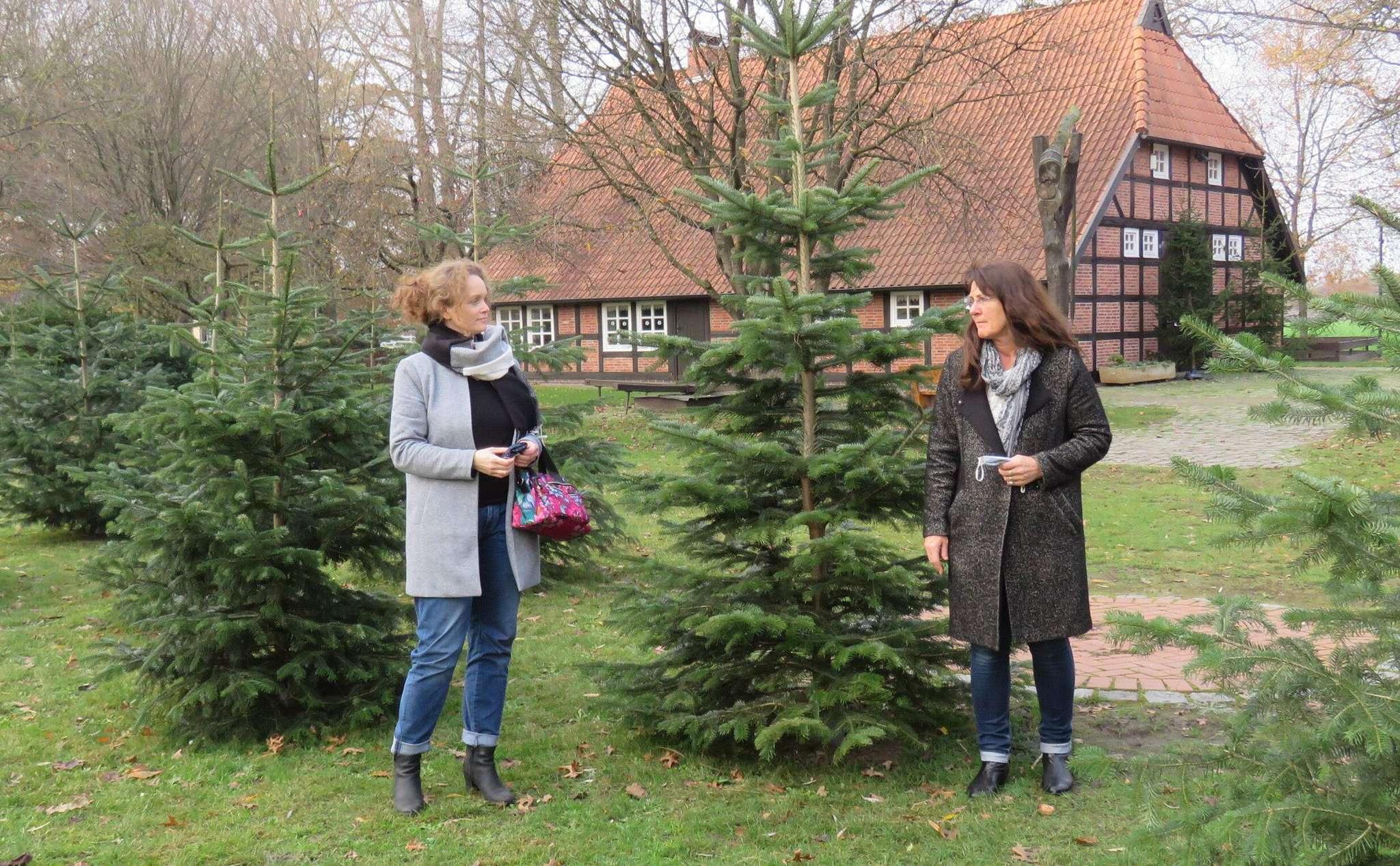 Der Weihnachtswald steht schon und Sandra Röse (links) und Christa Junge hoffen darauf, dass ihm möglich viele Bürgerinnen und Bürger einen Besuch abstatten. Foto: Elke Keppler-Rosenau