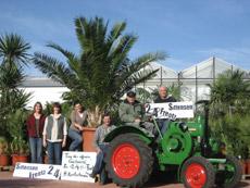Das Team um Inhaber Horst Kretschmann freut sich auf die große Saisoneröffnung der Palmenausstellung am 2. April