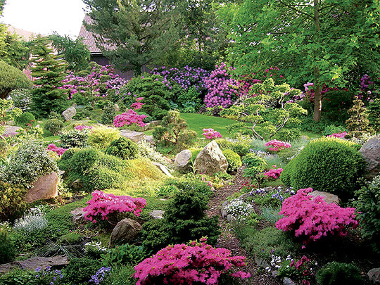 Eine Impression aus dem Garten der Eheleute Mekelburg in Söhlingen
