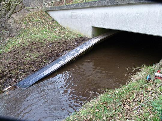 Mit neu erbauten Laufwegen, wie diesem unter der Beeke-Brücke, soll Fischottern Schutz vor dem Straßenverkehr geboten werden