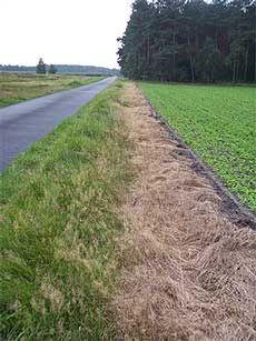 Der Zustand und das Vorhandensein, beziehungsweise das Nicht-Vorhandensein, von Wegeseitenrändern war mehrfach Thema. BUND-Kreisvorsitzender Manfred Radtke übt jetzt erneut Kritik an Landwirten