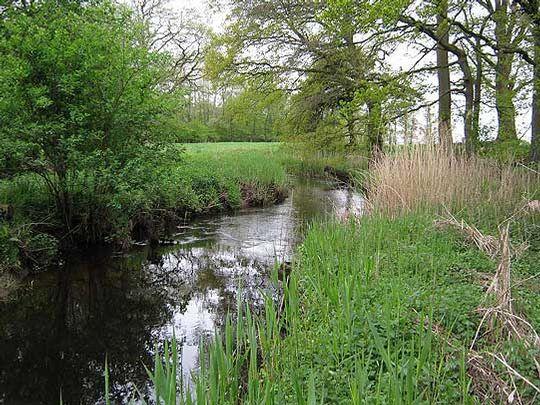 Das Wiestetal ist nun ein Naturschutzgebiet