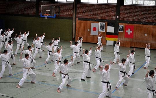 Viele Teilnehmer reisten für den Karate-Lehrgang mit Koichi Sugimura in die Wiestegemeinde