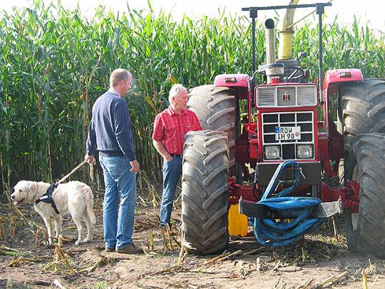 Das historische Maishäckseln in Wittorf fand schon bei der Premiere viel Zuspruch. Zahlreiche Oldtimerfreunde fanden sich mit ihren Traktoren ein, um eine Runde auf dem Acker zu ernten          Foto: Rehak