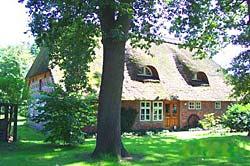 Regina Schliecker Immobilienmaklerin