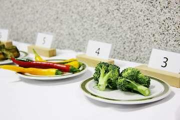 Schulmeisterschaft der Gastronomen
