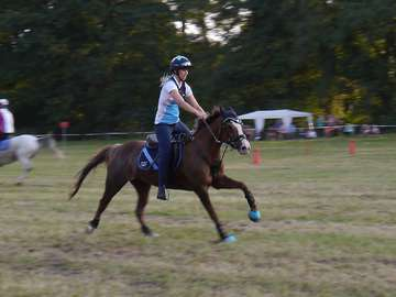 Mounted Games Championat